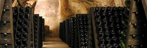 Champagne region - wine cellar