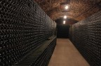 Underground cellar in a family owned Champagne winery