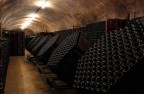 Riddling machines in a small winery