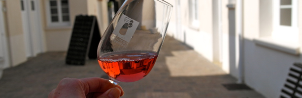 Paris Champagne Day Tour - discovering future Champagne rosé