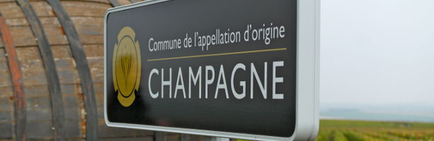 Private Champagne tours from Paris