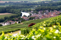 private Champagne tour Marne river